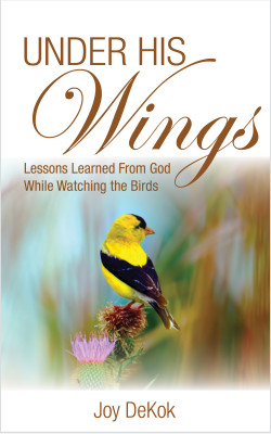Under His Wings – Lessons Learned From God While Watching the Birds